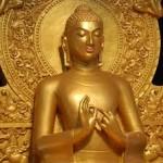 Buddha Darshan